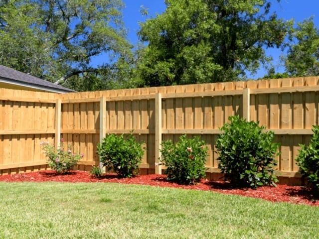 Dog Fence 9