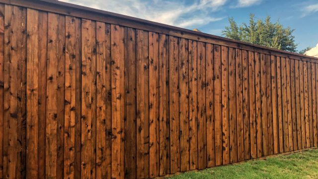 5 Questions to Ask Before Hiring a Lake Buena Vista Fence Company